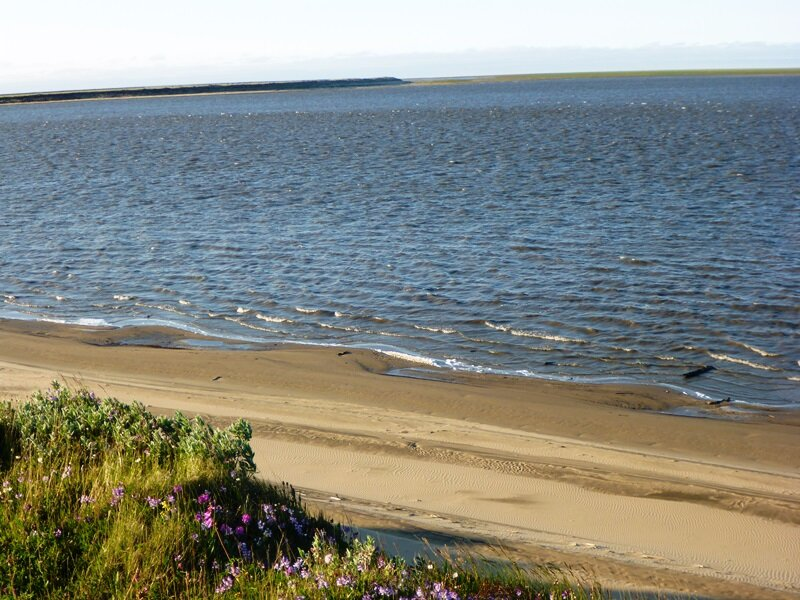 the sandy beach of Lena river