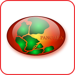 PAGE21 icon pangea